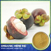 mangosteen powder extract