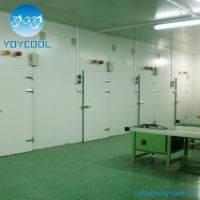 Cold Storage Room for freeze meat and fish