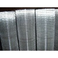 Fine 10 gauge sus 304 stainless steel welded wire mesh
