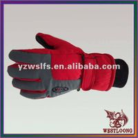 2012 Ski Gloves Waterproof Winterproof Men Stylish Gloves thumbnail image