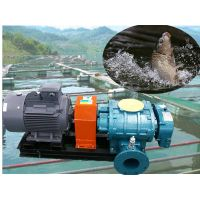 oxygen aeration/Oxygen increasing roots blower Aeration roots blower--zhangqiu fengyuan