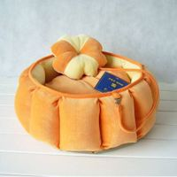 pumkin bed for dog pet house