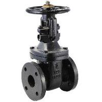Iron gate valve NRS