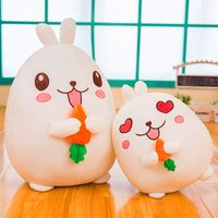 Cute rabbit soft toy rabbit doll with carrot gift DS-RB008 thumbnail image