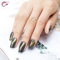 MAGNETIC CAT EYE NAIL GEL POLISH