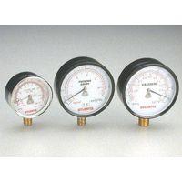 Diaphragm Type Pressure Gauge