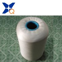 XT11289 Acrylic Filaments for Upgrade Garments Good Hand Feeling 75D/40f thumbnail image
