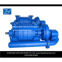 AT two stage vacuum pumps for power plant