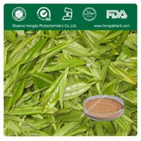 Green Tea Extract 100%pure powder TP 98% thumbnail image