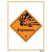 Self Adhesive Labels - Explosive (Set of 10 pcs)