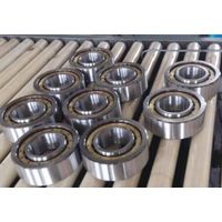 full completment cylindrical roller bearing SL182936
