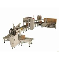 . Carton Box Packing System for Salt Packs