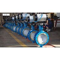 iron butterfly valve,duo check valve thumbnail image
