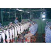 TY-natural latex examination gloves production line