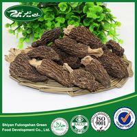 Dried Morel Mushroom