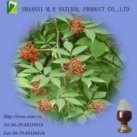 Elderberry Extract-HACCP certified manufacturer