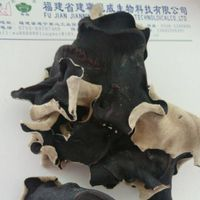 Dried Black Fungus/Wood Ear Mushroom