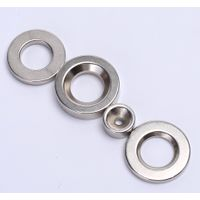 Competitive Price diametric ring magnet with Strong Magnetic