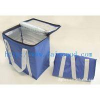 Picnic Cooler Bag for Frozen Food(F-013)