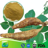 GMP Certified High Quality Herbal Pueraria Extract Puerarin