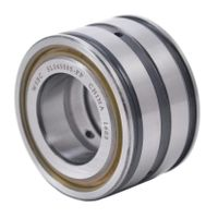 Sealed Double Row Full Complement Cylindrical Roller Bearings SL04 5015 PP