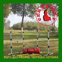 Ladder Golf Ball Game