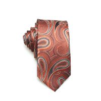 Wholesale Custom Design Paisley Print Ties Men Necktie thumbnail image
