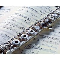 17 Open Hole Sterling-Silver Body Flute, Silver Plated Offset Key