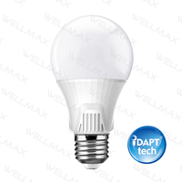 Ballet LED Bulb - iDAPT tech
