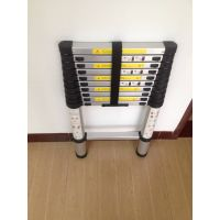 6061-T6 Aluminum Step Ladder Multi-Purpose Straight Folding Ladder in Silver Anodized Surface