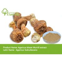 free sample high quality Agaricus blazei Murrill extract