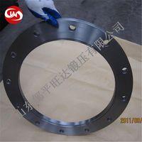 ANSI BS DIN EN1092-1 JIS Stainless Steel Flange thumbnail image