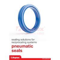 Pneumatic seals