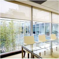 Transparent Sunscreen fabric For Roller Blinds