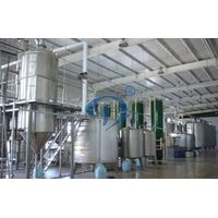 Processing glucose production from starch