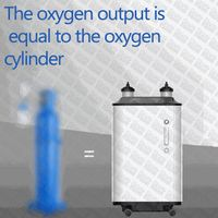 low cost 10L oxygen concentrator generator oxygen-concentrator cylinders medical