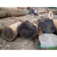Padouk logs for sell from Cameroon thumbnail image