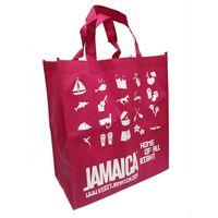 Promotional Non Woven Reuasble bag, shopping bag