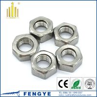 DIN934 stainless steel 304 hex nut M24