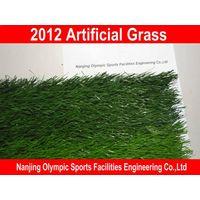 2012 Artificial grass