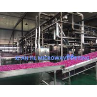 Continuous Type Microwave Dehydration Machine