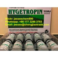 Buy best HGH HYGETROPIN HGH Peptides white powder safe fast shipping (Wickr:jesseechem890)