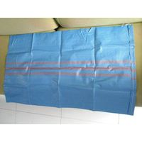 blue pp woven bag manufacturer export to Poland