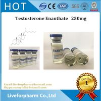 Injectable Steroid Gear Test Enanthate 250/Testosterone Enanthate 250 mg for muscle growth Injectabl