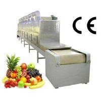 Fruit&Vegetable processing microwave dryer equipment thumbnail image