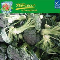 Broccoli Nutrition Info Growing Broccoli Broccoli Crowns