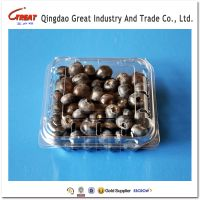 Clear plastic fruit packaging clamshells for blueberry