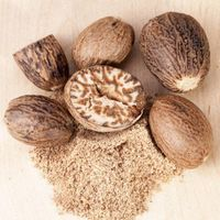 Nutmeg (Jaiphal) thumbnail image