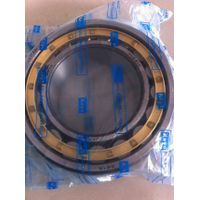70mmX125mmX31mm     NU2214 Cylinfrical Roller Bearing