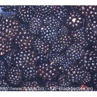frozen blackberries and ginger, garlic,mushrooms etc thumbnail image